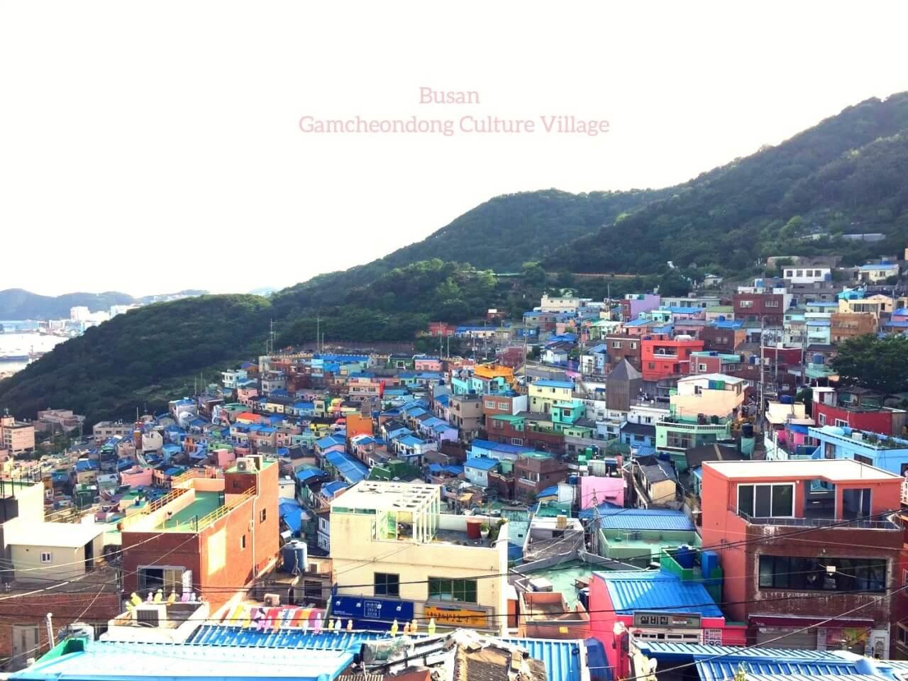 【釜山遊記:甘川洞文化村】藍色屋頂、粉色矮牆,色彩是貧窮村落的翻身手段
